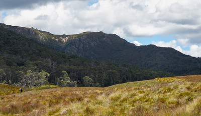 Cental Plateau