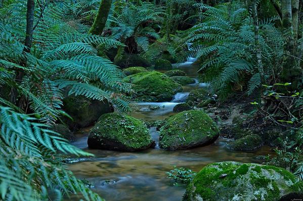Australia 2012 Tasmania and New South Wales