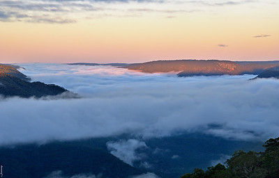 Dawn over Gondwana Rainforests