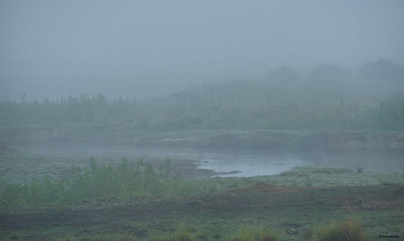 Flood Plain II