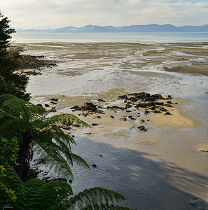 Tasman Bay ;  Evening