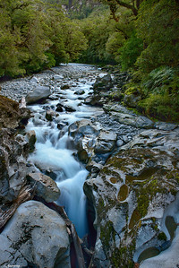 Milford Sound's Tributary
