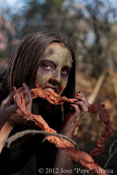 ZombieRunSample-8