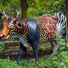 Houston Zoo Art Cow