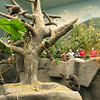 Zoo : 9 galleries with 191 photos