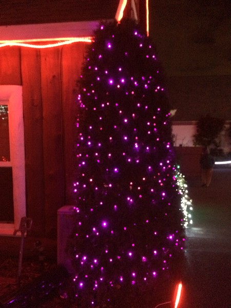 I've always wanted a purple Christmas tree.