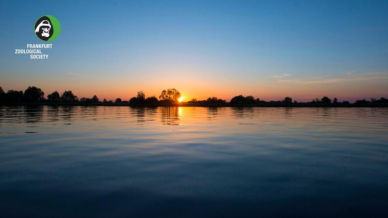 Sunrise at the River Pripyat Floodplains. Turov area, Polesie, Belarus. © Daniel Rosengren