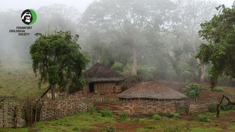 Bale Illegal settlement