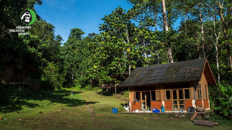 The Field station at Open Orangutan Sanctuary, near Bukit Tigapuluh, Sumatra, Indonesia. © Daniel Rosengrenat the Field station at Open Orangutan Sanctuary, near Bukit Tigapuluh, Sumatra, Indonesia. © Daniel Rosengren