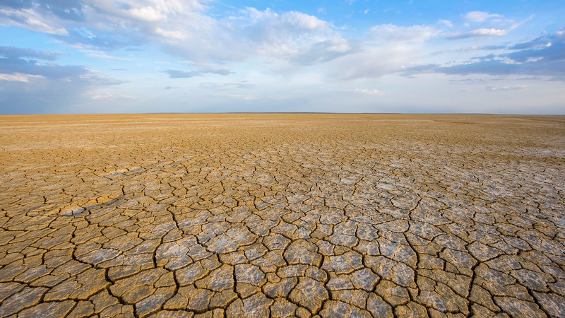 A salty plain, occasionally flooded by water and bart of the greater Aral Sea basin. Kazakhstan. © Daniel Rosengren