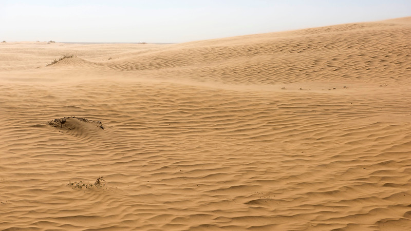 The vast steppe of Kazakhstan is occasionally interrupted by sand dunes. © Daniel Rosengren