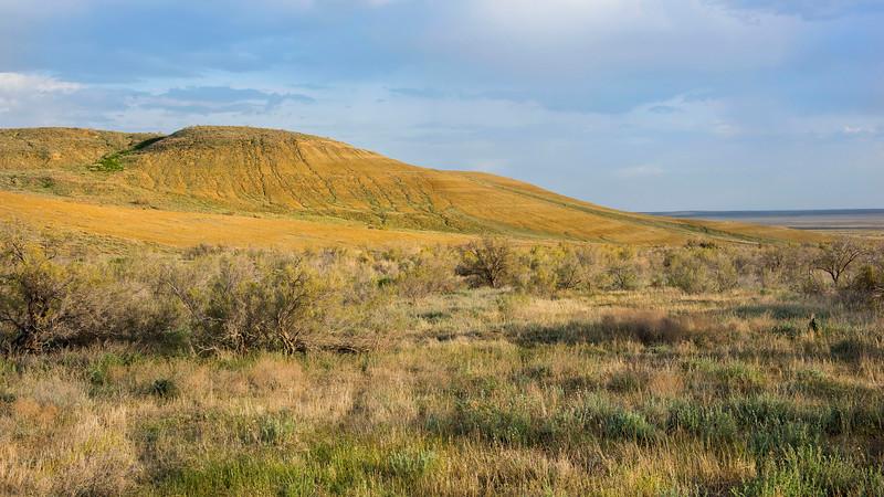 An escarpment in the Irgiz-Turgai reserve, Kazakhstan. © Daniel Rosengren