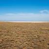 The vast steppe of Kazakhstan, here in Altyn Dala. © Daniel Rosengren