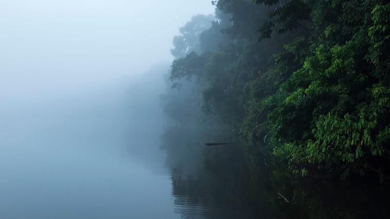 A misty morning at the Cocha Salvador, Manu NP, Peru. © Daniel Rosengren