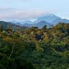 The rainforest near Manu NP seen from the Tono ranger station, Peru. © Daniel Rosengren