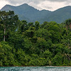 Lake, rainforest and hight mountains in Mahale NP.