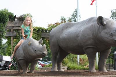 Cincinnati Zoo August 2013