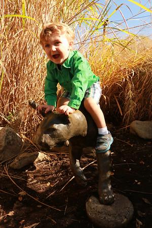 Cincinnati Zoo October 2014