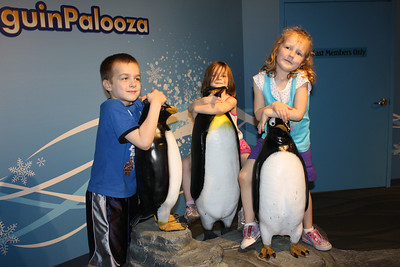 Newport Aquarium April 2011
