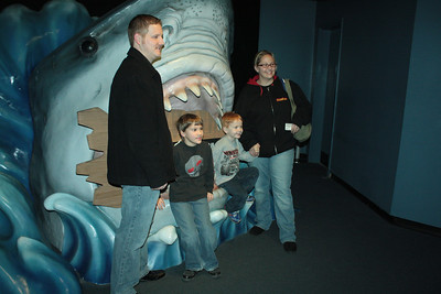 Newport Aquarium January 2013