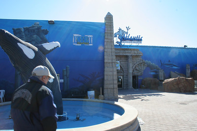 Atlantis Marine World, Riverhead, NY.