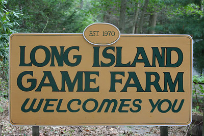 Long Island Game Farm, Manorville, NY.