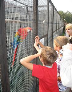 2008-09-07, Birds Park