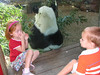 Henry did not want to get any closer to the giant panda.