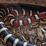 Arizona Mountain Kingsnake Snake