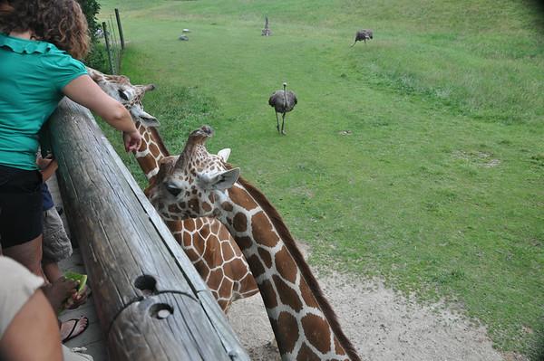 binder park zoo 7-5- 2014