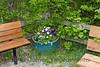 gardening_118