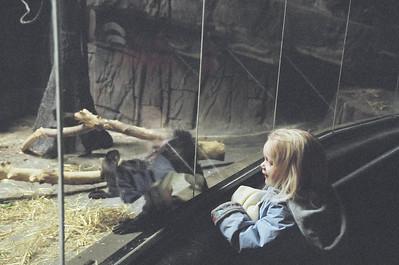 Hogle Zoo - November 2003