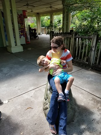 Jacksonville Zoo 05132017