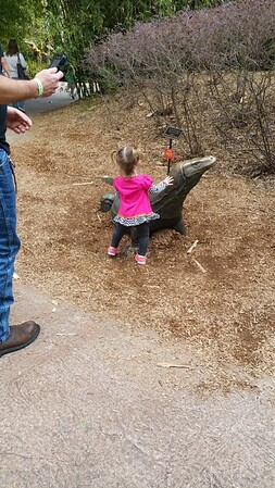 Jacksonville Zoo 12312016