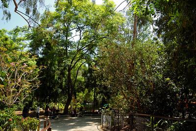 Los Angeles Zoo_3
