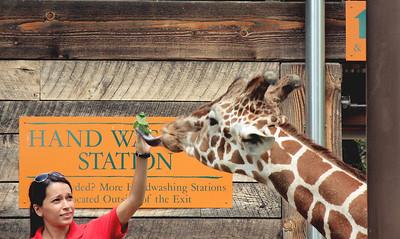 Maryland Zoo - August 18 2012