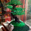 "April 8, 2017<br /> <br /> Bonsai Tree (Legos)<br /> <br /> ""MEMPHIS ZOO"" 2017<br /> Elephant's Trunk Gift Shop<br />  2000 Prentiss Place<br />  Memphis, TN 38112 <br /> <br />  Official website is here: <br /> <br /> <a href=""http://www.memphiszoo.org"">http://www.memphiszoo.org</a>"
