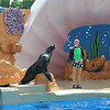 Golden Dome Sea Lion Show