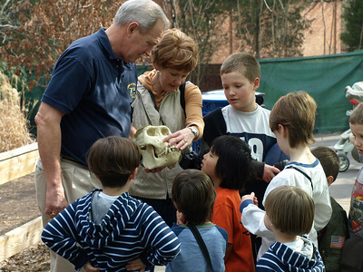 Alas, poor Yorick... Kids learn about gorillas at the Great Ape House.