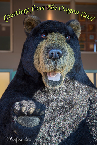 This larger-than-life Black Bear greets you at the Oregon Zoo Store!