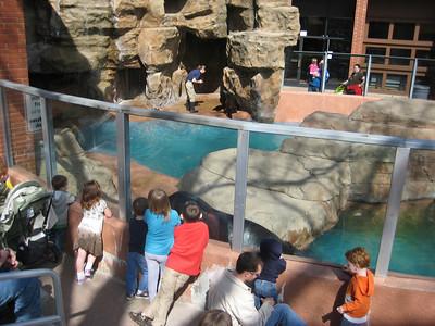 Peoria Zoo 3/18/10