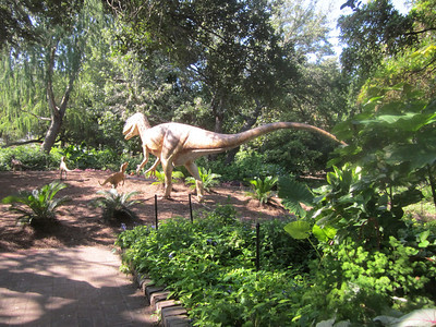 SA Botanical Gardens Dinosaur Stampede
