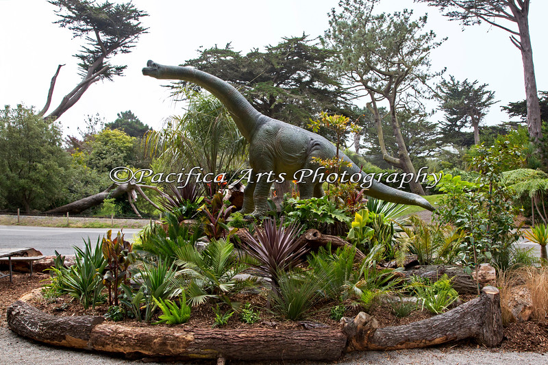 A new picnic area with Dinosaurs, right outside the South American Tropical Aviary building.