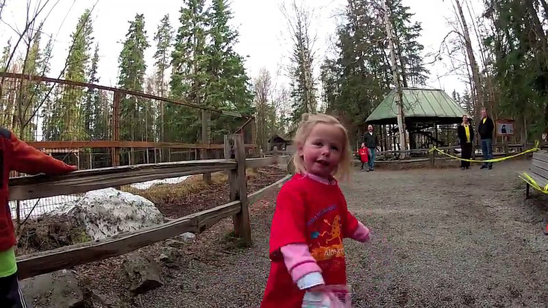 2012 Alaska Zoo & McDonald's Fun Run.