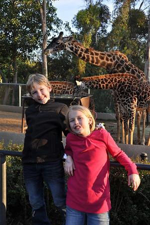 San Diego - Balboa Park & SD Zoo