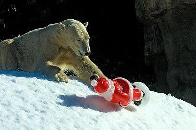 Oops!  Santa gets away...