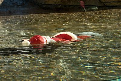 Dead Santa...