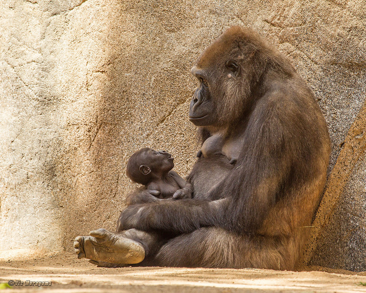 IMANI AND HER 2 MONTH OLD BABY DAUGHTER.