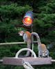 A pair of new Crowned Lemurs have discovered the warmth of the heating lamp.