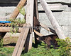 These two love to play!<br /> (Black Bear cubs)
